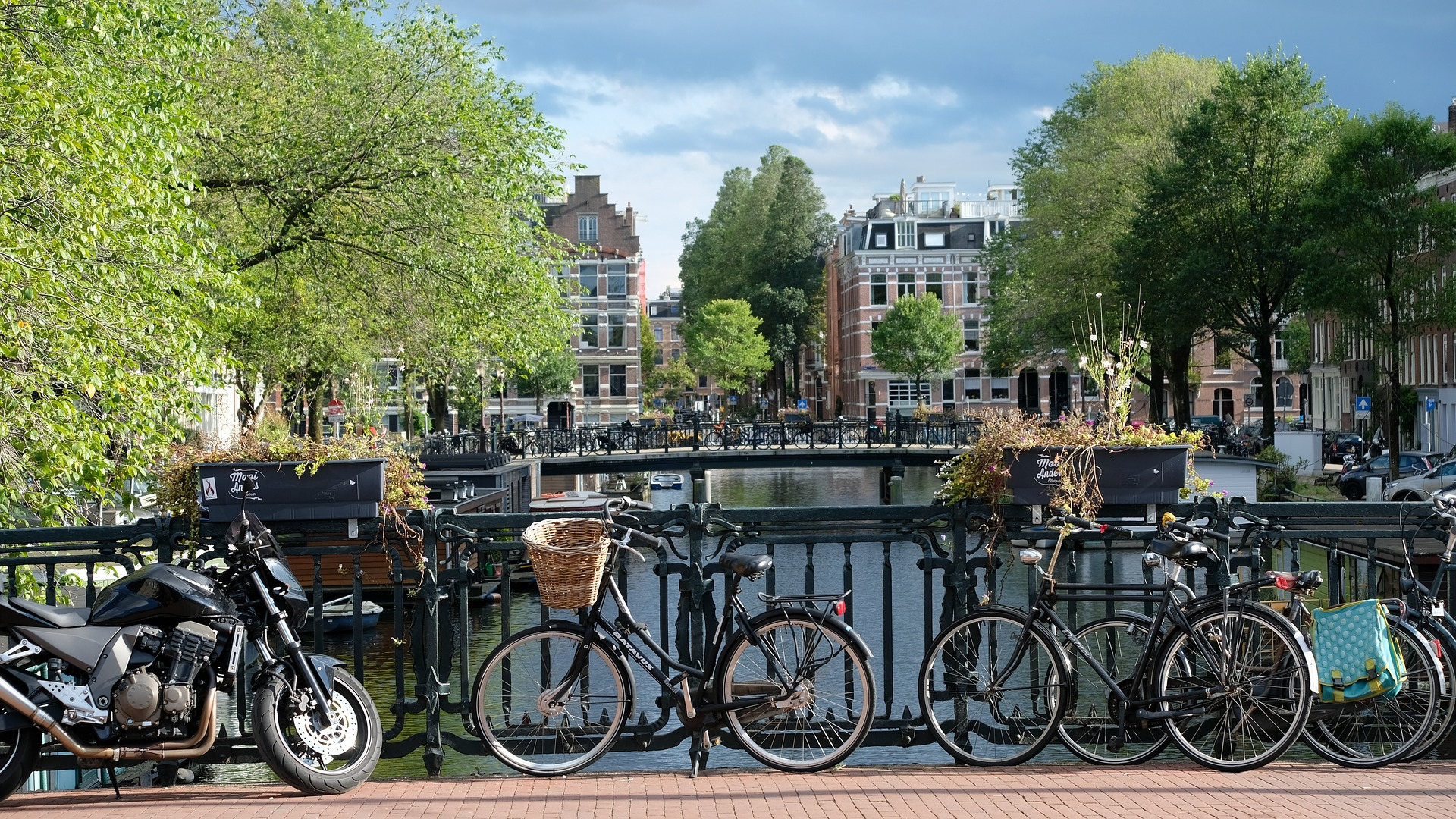 Learn Dutch - visit this page to get started